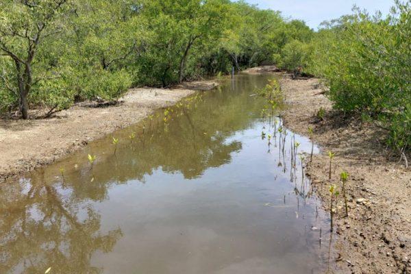 1. Inondation du canal principal