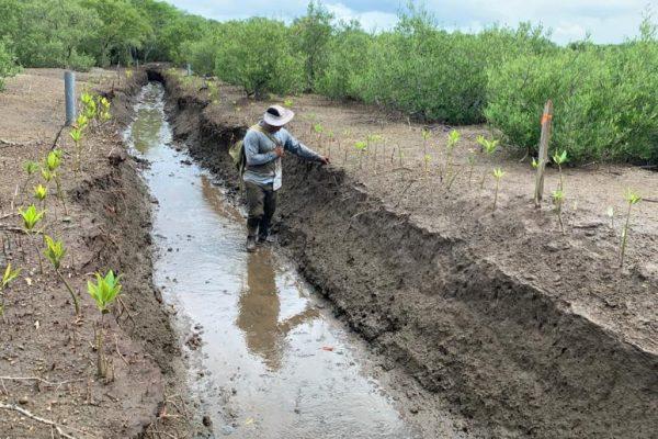 2. inondation des canaux